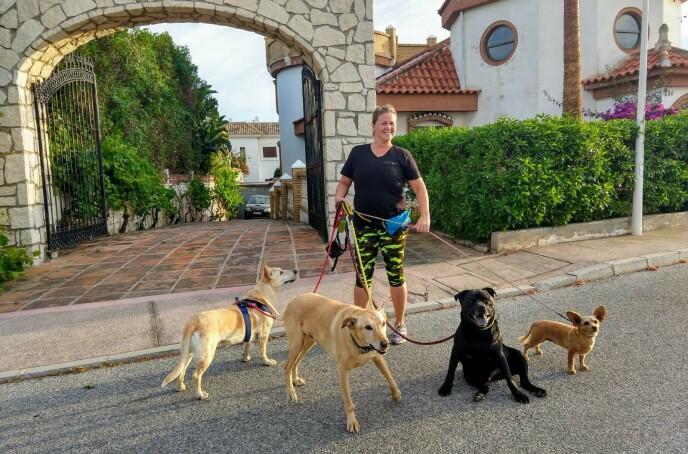 HUNDEPASSER: Før Spania gikk i lockdown jobbet Victoria både som hundepasser og på et helsesenter. Så snart Europa åpner opp igjen, reiser hun tilbake. FOTO: Privat