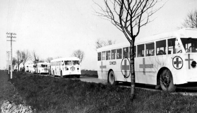 DE HVITE BUSSENE: I samarbeid med svensk Røde kors organiserte Grev Folke Bernadotte evakuering av fanger fra Hitlers konsentrasjonsleirer i mars og april 1945 - Bittema var med på en av disse turene. FOTO: NTB arkiv