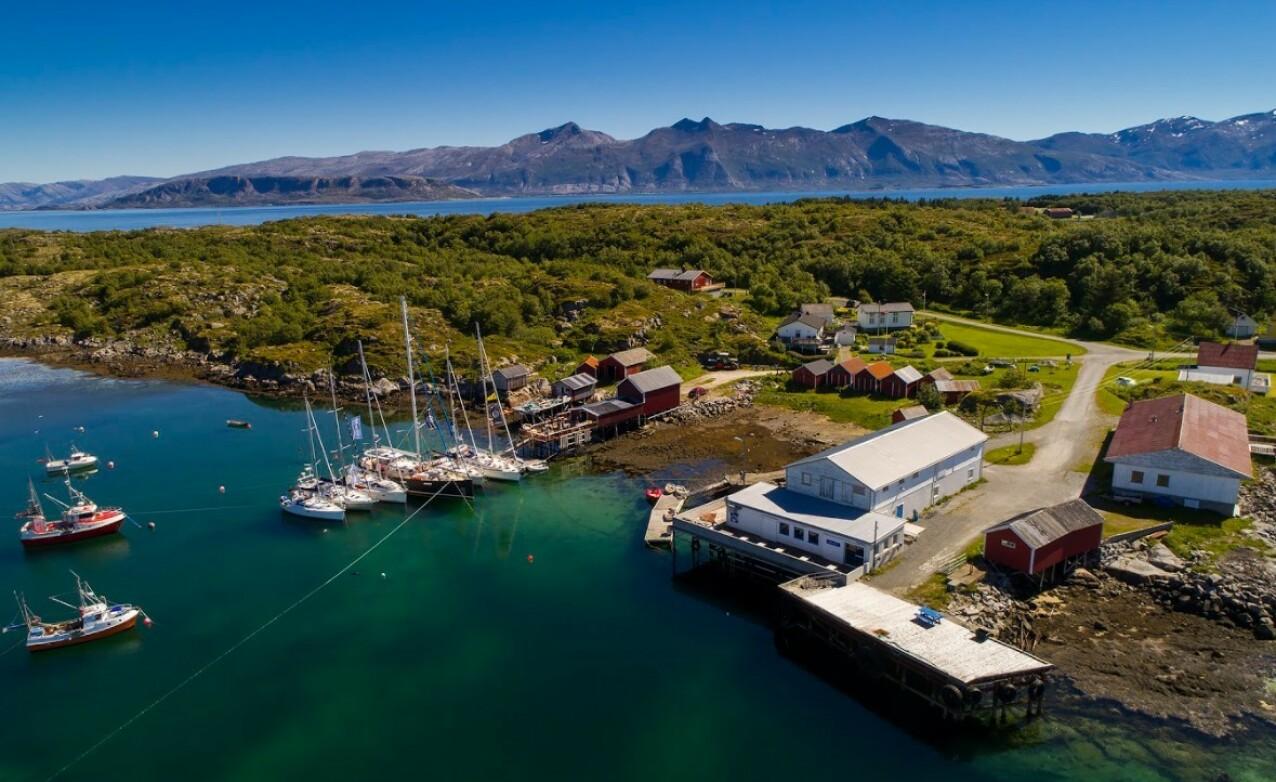 SOMMERIDYLL: Himmelblå brygge ligger på øya Ylvingen i Vega kommune i Nordland. FOTO: Mats Grimsæth