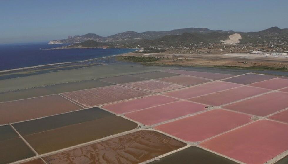 NATURSALT: Det naturlige havsaltet ekstraheres i naturparken Ses Salines d'Eivissa - på samme plass som det er blitt utvunnet siden 600 år før vår tidsregning. Foto: Consell de Ibiza