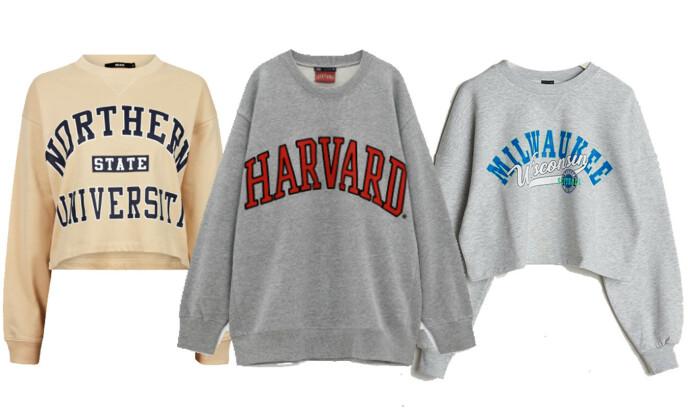 COLLEGEGENSERE: Gul fra Bik Bok, kr 299. Grå med Harvard-logo fra Zara, kr 379. Grå med blå logo fra Gina Tricot, kr 249.