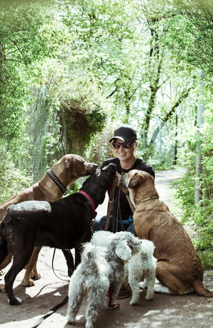 OMRINGET AV HUNDER: - Hadde jeg sett inn i fremtiden og oppdaget at jeg var omringet av hunder, hadde jeg nok hatt vanskeligheter med å forstå det, sier Åsne. Foto: Astrid Waller