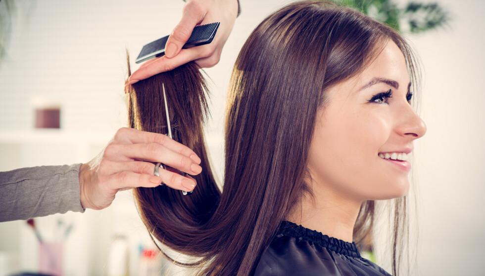 KLIPP: Dersom man ikke er flink til å pleie og beskytte håret om sommeren, kan man risikere å måtte klippe ekstra mye når høsten kommer, fordi håret er blitt tørt og livløst. FOTO: NTB