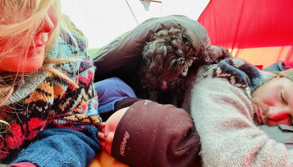 SOVER I TELT: Fem av syv netter overnatter familien i telt. FOTO: Privat