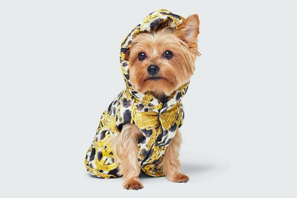 IKKE NYTT: Hunder i moten er ikke noe nytt. Her fra H&M sitt designersamarbeid med Moschinos Jeremy Scott. FOTO: H&M