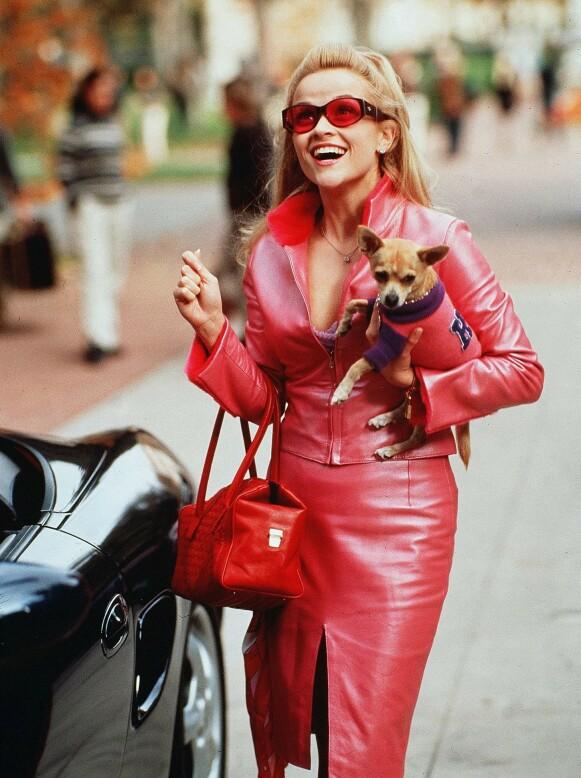 PÅ FILM: Også på film har kjæledyr vært linket med mote. Her fra filmen «Lovlig blond». FOTO: MOVIESTORE/REX NTB