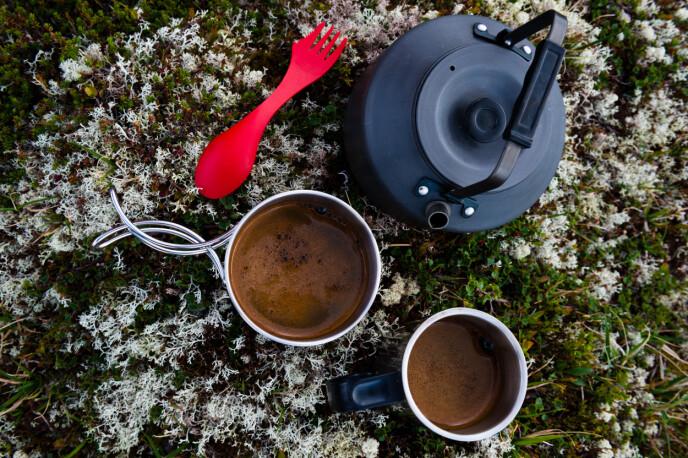 UT PÅ TUR: I stedet for å kjøpe isen eller kaffen på bensinstasjonen, kan man lage kaffe på primusen eller ta frem en is fra kjølebagen undeveis. FOTO: NTB