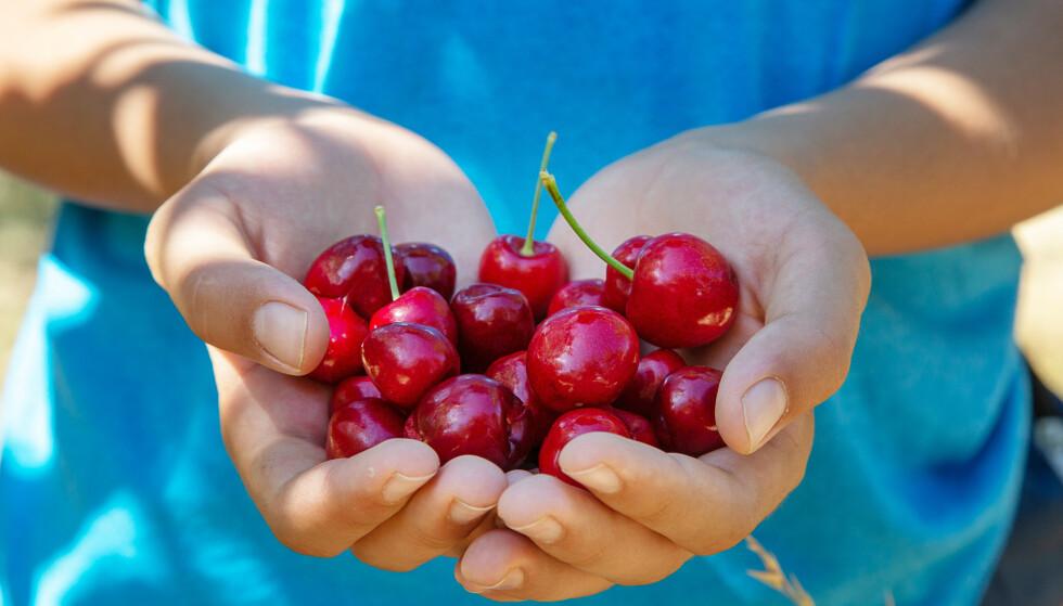 SOMMERFAVORITT: Moreller er en sommerfavoritt for mange - og virkelig ikke et dumt valg av snacks. Foto: NTB.