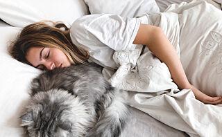 Bør vi unngå slumring om morgenen?