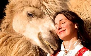 Flyttet fra storbyen og kjøpte kameler i Finnmark