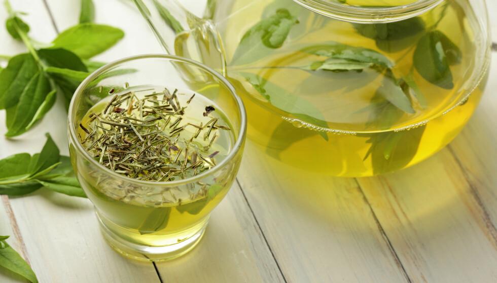 BEROLIGENDE: Grønn te har som kjent mange helsefordeler - blant annet kan det balansere en irritert hodebunn! Foto: NTB