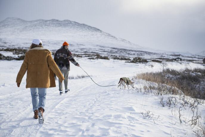 Den norske vinteren er ikke bare bare for en mann fra California, selv om den er vakker. FOTO: Anki Grøthe