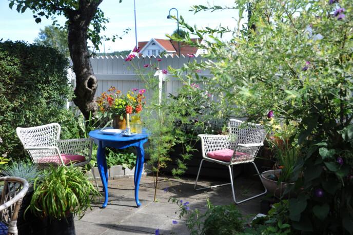 Også hagen bærer preg av gjenbrukskupp. FOTO: Marianne Otterdahl-Jensen