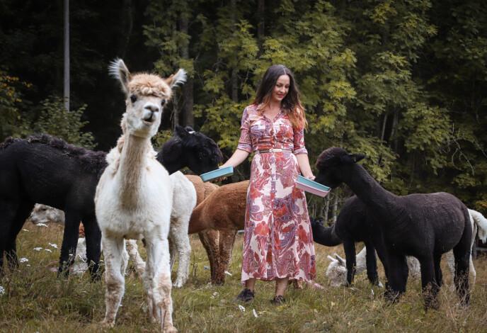NYSGJERRIG: Alpakkaer er sosiale vesener, og liker å være der det skjer. Theo (i front) pleier alltid å være først med å hilse på. Foto: Ida Bergersen