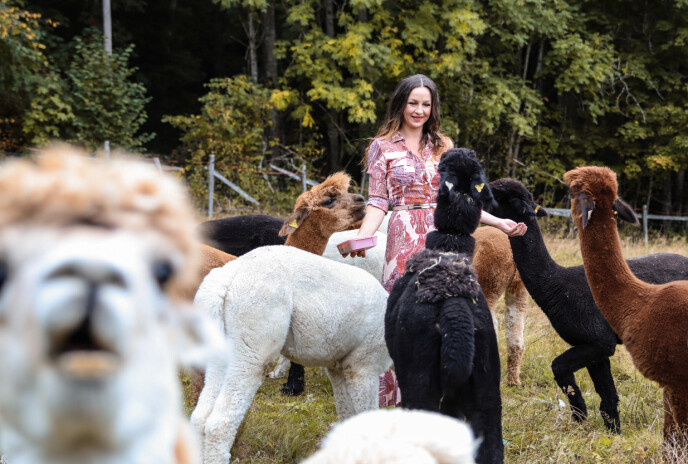 HEKTISK: Å drive en gård alene, er svært hektisk. Men Lene stortrives. Foto: Ida Bergersen
